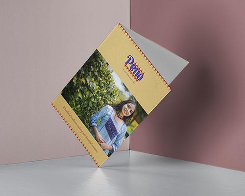 Peno Brochure Designed by WDSOFT